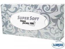 HWE-CHDECOBOX100 W